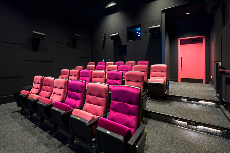 Digital cinema, HD video, and film projection design and ...
